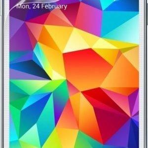Belkin TrueClear Samsung Galaxy S5